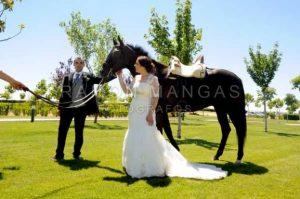 DSC_7508 copia - Ramón Mangas Fotógrafo Salamanca